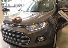 Ford Ecosport giá hấp dẫn cuối năm, tặng nhiều phần quà giá trị lên đến hàng chục triệu đồng