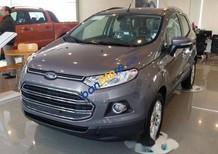 Cần bán xe Ford EcoSport đời 2016, giá chỉ 530 triệu