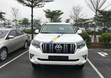 Bán xe Toyota Land Cruiser Prado VX đời 2018, xe nhập mới 100%, đủ màu, giá bán buôn