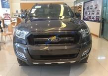 Bán Ford Ranger Wildtrack 2.2L AT, tại Điện Biên, màu xám (ghi), nhập khẩu nguyên chiếc giá tốt