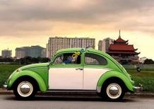 Bán xe Volkswagen Beetle đời 1990, màu xanh, xe nhập