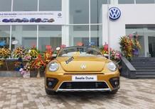 Bán Volkswagen New Beetle năm 2017, màu xám (ghi), xe nhập