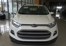 Ford Ecosport xe cực hot, đủ màu, giao ngay, hỗ trợ vay vốn 80%