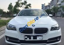 Bán BMW 5 Series 520i AT đời 2013, màu trắng, nhập khẩu