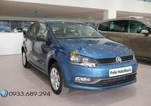 Volkswagen Polo Hatchback nhập khẩu - nhiều tính năng mới - Đại lý VW Central 0933.689.294