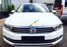 Cần bán Volkswagen Passat đời 2017, màu trắng, nhập khẩu nguyên chiếc