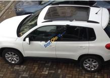 Bán Volkswagen Tiguan 2.0TSI đời 2010, màu trắng, nhập khẩu
