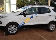 Bán xe Ford EcoSport Titanium đời 2014, màu trắng, giá chỉ 490 triệu