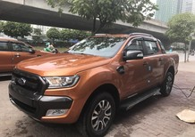 Cần bán Ford Ranger Wildtrak 3.2AT 2 cầu đời 2017, màu nâu, nhập khẩu mới 100%, xe giao ngay