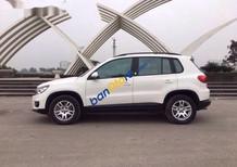 Bán Volkswagen Tiguan đời 2012, màu trắng, nhập khẩu nguyên chiếc, giá chỉ 780 triệu