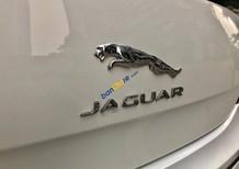 Chính chủ bán xe Jaguar XJ 2.0 đời 2014, màu trắng, xe nhập