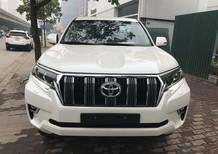 Bán Toyota Land Cruise Prado VX 2018, màu trắng, đen, nâu, xe và giấy tờ giao ngay