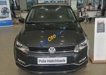 Cần bán xe Volkswagen Polo đời 2017, màu xám, giá chỉ 695 triệu