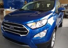 Cần bán xe Ford EcoSport 2018 Titanium 1.5 Dragon AT, SYNC3, tùy chọn 8 màu khác nhau