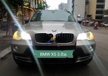 Cần bán xe BMW X5 3.0si năm sản xuất 2007, màu vàng, nhập khẩu