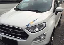 Bán Ford EcoSport 1.5 Titanium đời 2018, màu trắng