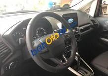 Bán xe Ford EcoSport năm 2018, màu nâu