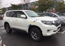 Bán xe Toyota Prado VX 2.7L 2018, màu trắng, nhập khẩu nguyên chiếc