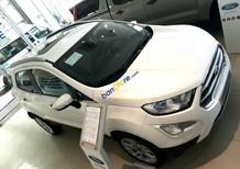 Bán xe Ford Ecosport bản cao cấp 2018