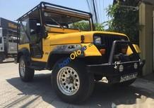Bán Jeep Wrangler MT năm 1989, màu vàng