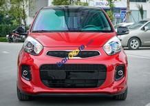 Giá tốt nhất bán lấy chỉ tiêu, hỗ trợ tối đa KM, chi phí khách hàng mua xe trả góp. Khuyến mãi full gói phụ kiện giá trị