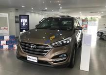 Bán xe Hyundai Tucson đời 2018, màu nâu, 765tr