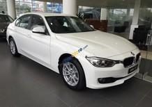 Cần bán BMW 3 Series 320i sản xuất 2017, màu trắng, nhập khẩu