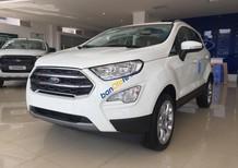 Ford Hòa Bình bán các phiên bản Ecosport 2018, giao xe ngay và hỗ trợ thủ tục trả góp 80%