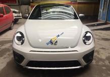 Cần bán Volkswagen Beetle Dune đời 2017, màu trắng, xe nhập
