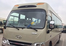 Bán Hyundai County Limousine năm sản xuất 2017, màu kem (be)