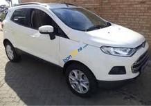 Cần bán lại xe Ford EcoSport đời 2015, màu trắng, 465tr