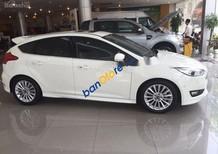 Cần bán Ford Focus sản xuất 2018, màu trắng, 600 triệu