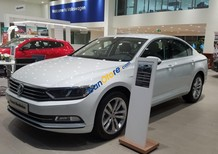 Bán xe Volkswagen Passat Blue Motion nhập khẩu, hỗ trợ trả góp 80% giá trị xe