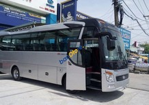 Bán xe Hyundai Universe Global Noble K29-K34 2017