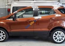 Bán ô tô Ford EcoSport 1.0 Ecoboost Titanium+ 2018, màu nâu, giá 689tr