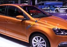 Bán gấp, siêu khuyến mãi tháng cùng ô tô Volkswagen Polo đời 2017, màu bạc, xe nhập, giá tốt