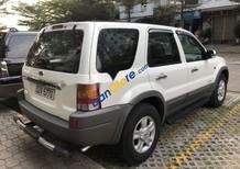 Bán xe Ford Escape 2.0 sản xuất năm 2004, màu trắng, giá tốt