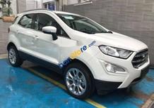 Cần bán Ford EcoSport sản xuất 2017, màu trắng, giá chỉ 638 triệu