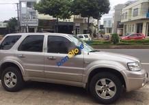 Bán Ford Escape 2.3l AT đời 2005 số tự động