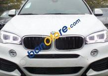 Bán xe BMW X6 nhập khẩu nguyên chiếc
