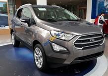 Bán Ford EcoSport Titanium 1.5L 2018, liên hệ để có ưu đãi tốt nhất, xe đủ màu giao ngay