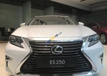 Bán Lexus ES 250 đời 2018, màu trắng, nhập khẩu nguyên chiếc chính hãng