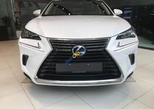 Bán Lexus NX 300 đời 2018, màu trắng, nhập khẩu nguyên chiếc chính hãng