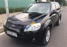Cần bán xe Ford Escape 2.3XLT sản xuất năm 2010, màu đen, giá tốt