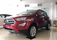 Xe Cũ Ford EcoSport 1.5MT 2018