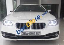 Bán BMW 5 Series 520i 2014, màu trắng, nhập khẩu