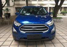 Bán Ford EcoSport Trend năm sản xuất 2018, màu xanh lam