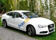 Cần bán lại xe Audi A5 sản xuất năm 2013, màu trắng như mới
