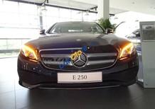 Cần bán xe Mercedes E250 sản xuất năm 2018, màu xanh lam