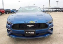 Xe Mới Ford Mustang 2.3 Ecoboost 2018